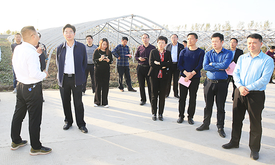 我县组织开展扶贫产业园区集中观摩活动 中国财经新闻网 www.prcfe.com